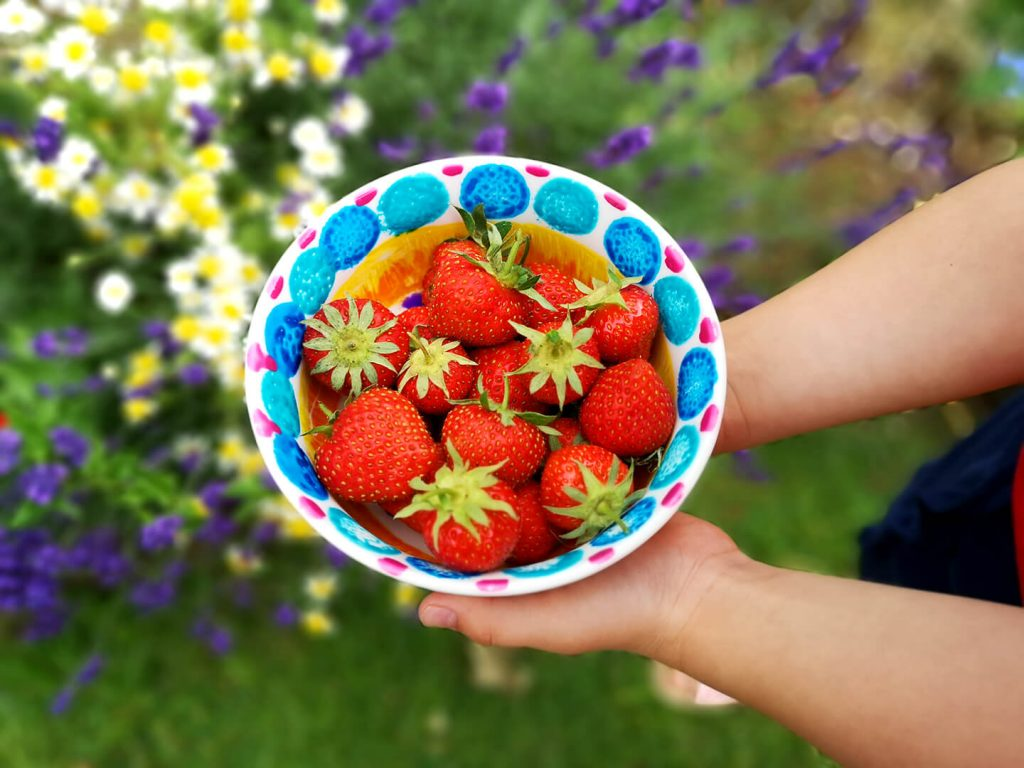 A colourful bowl of Strawberries.
